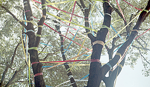 Rivista-impresa-sociale-innovazione-sociale-reti-wireless-comunitarie